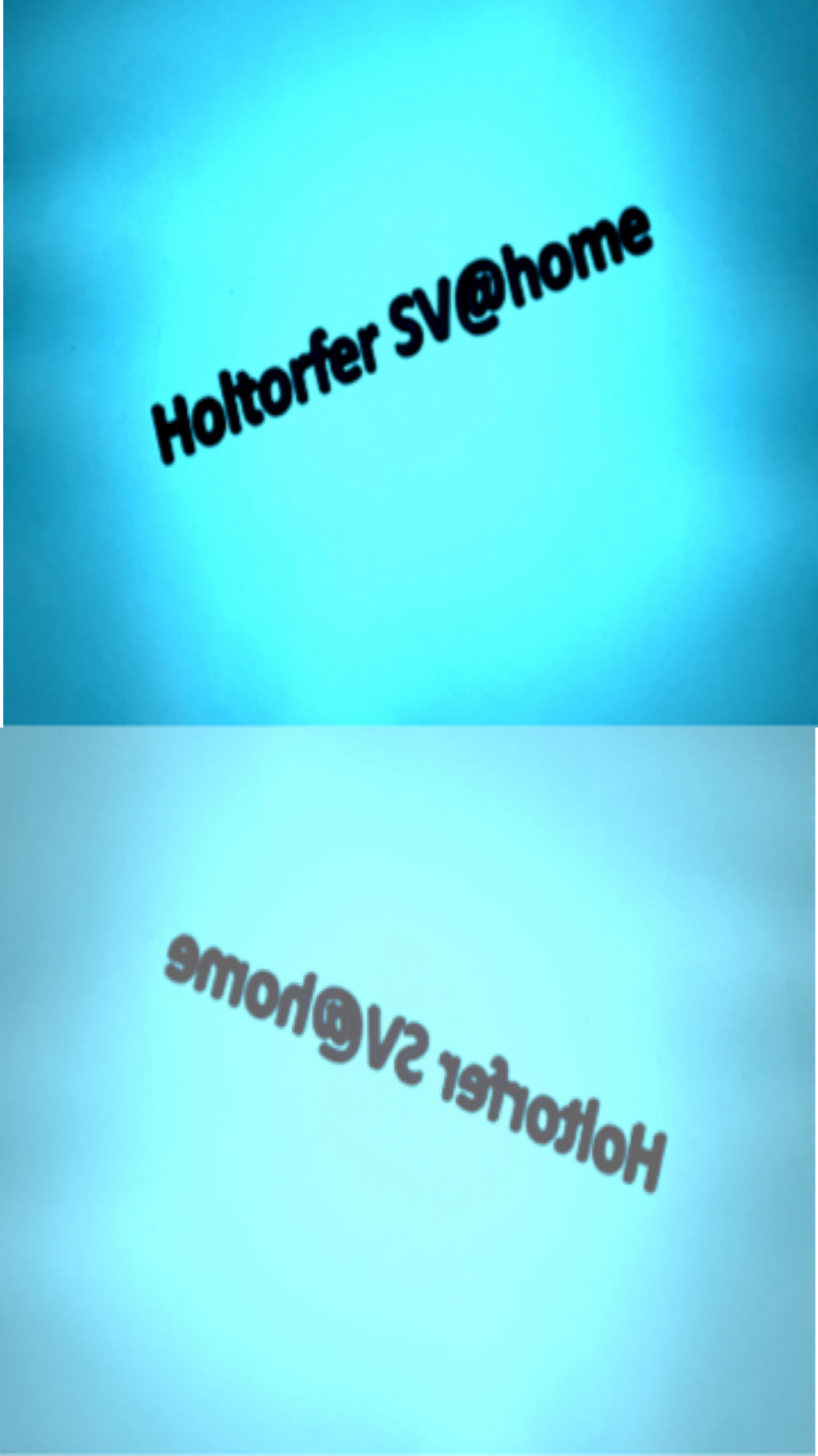 Holtorfer Sv